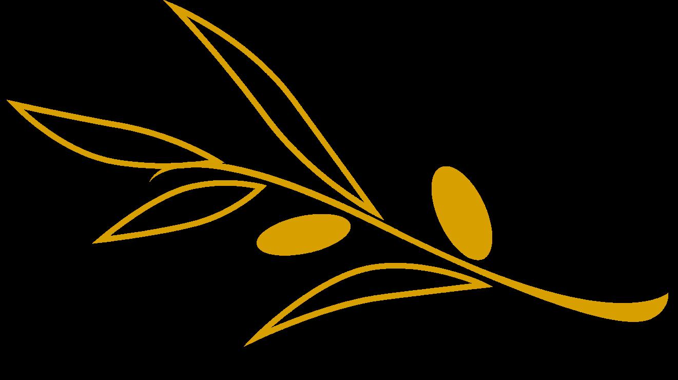 branche-olivier-olea-patrimoine